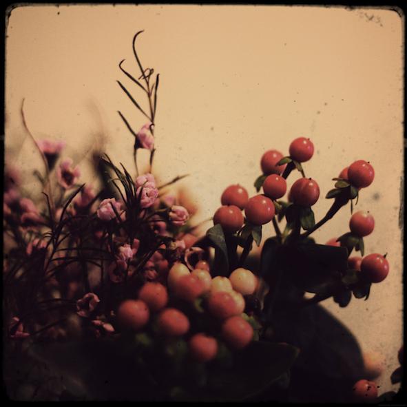 fleursmarche2_effected.png