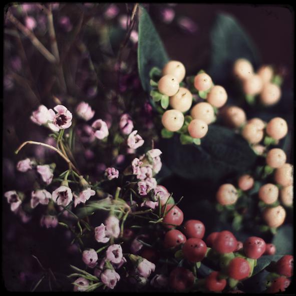 fleursmarche_effected.png